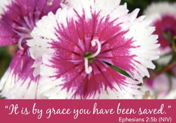 It is by Grace You have been Saved